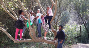 girlsintree